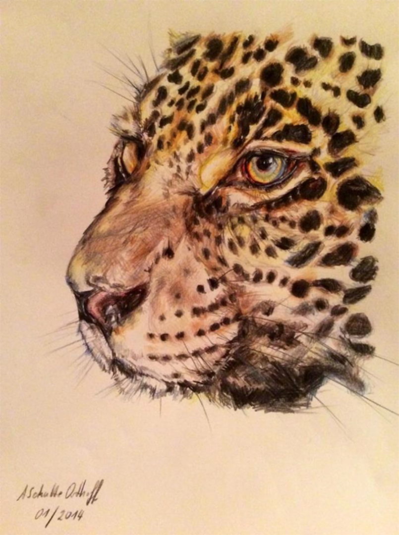 Leopard_Buntstift_DINA4_01_2014