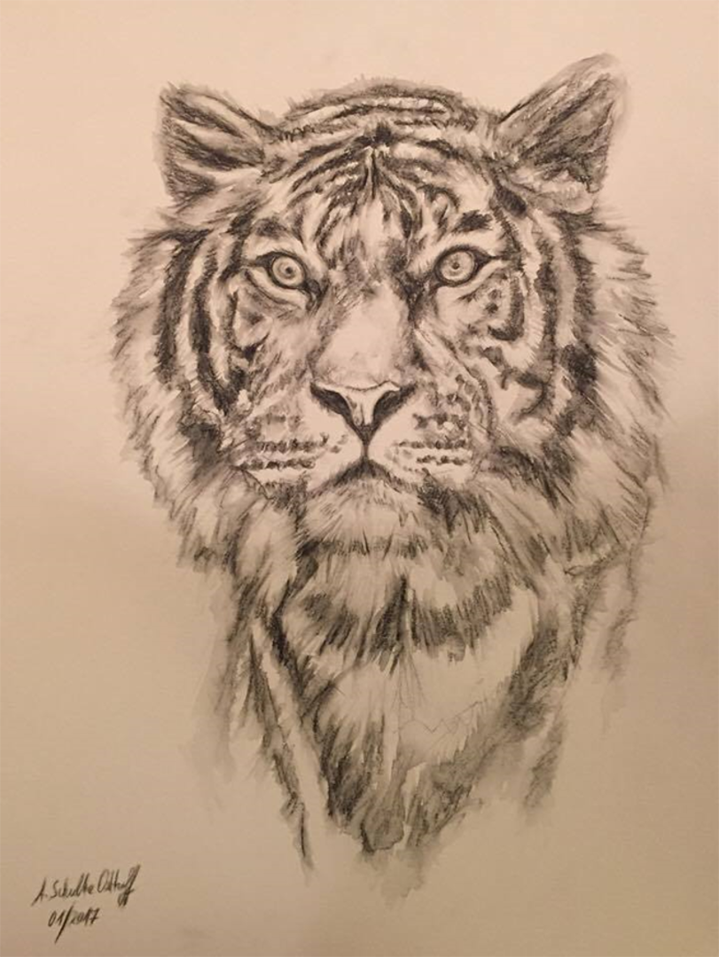 Tiger_Aquarellstifte_DINA3_01_2017